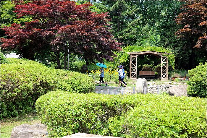 식물원 산책하는 사람들