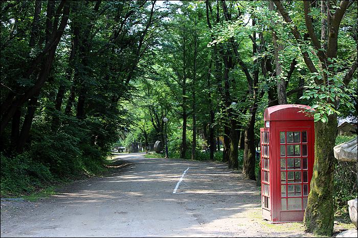 숲이 우거진 산책길과 전화부스
