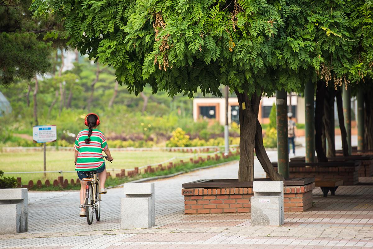 자전거타는 아이와 덩쿨터널