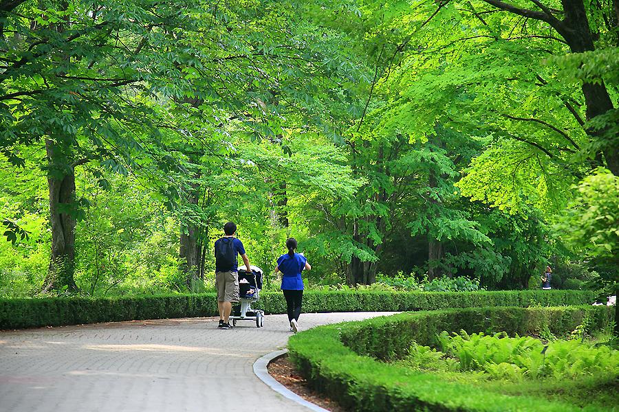 수목원 산책을 하는 사람들