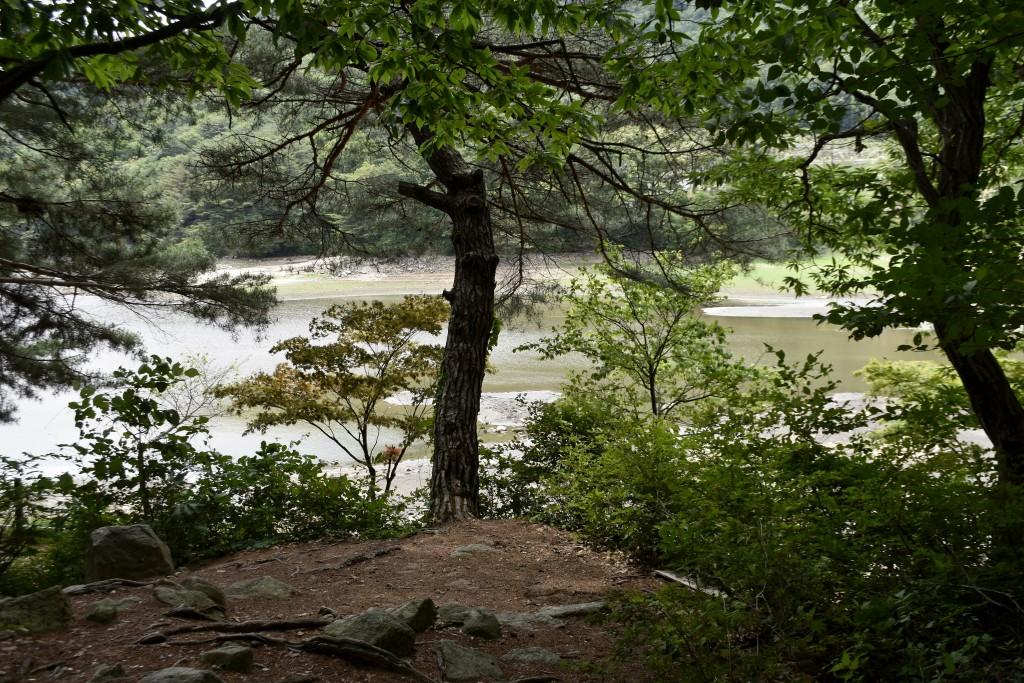 나무들 사이로 보이는 산정호수