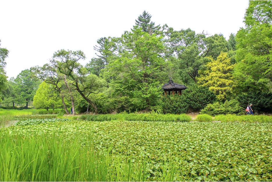 수생식물원의 모습