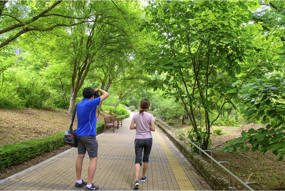 숲길 걷는 사람과 사진을 찍는 사람