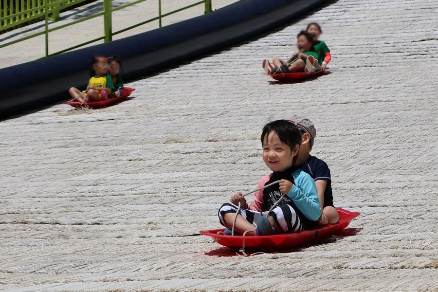 사계절 썰매를 타는 아이들