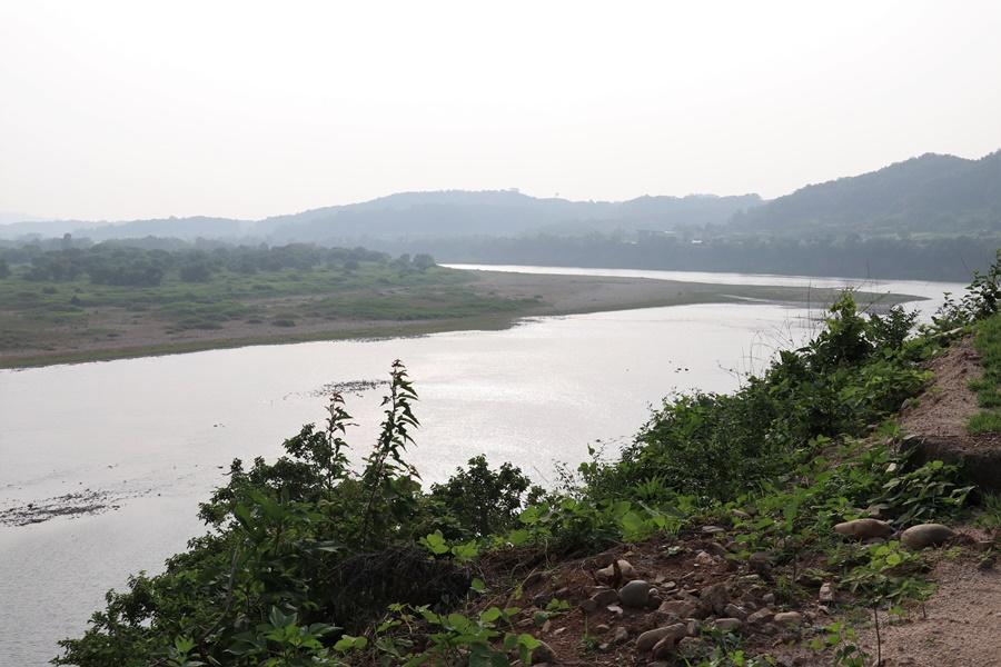 강변이 보이는 풍경