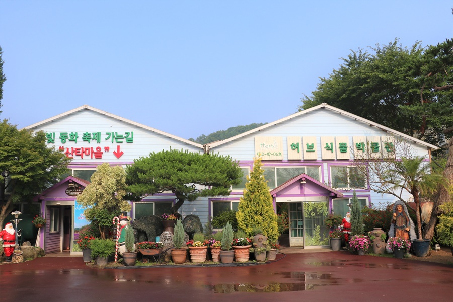 산타마을 가는 길과 허브 식물 박물관 사진