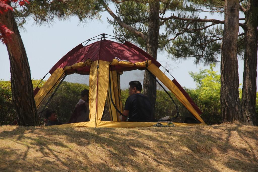 숲공원의 텐트 속 사람들