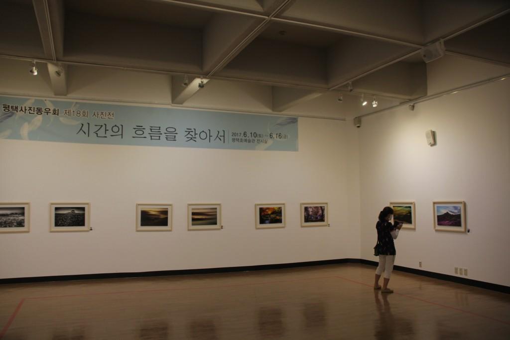 예술관 내부 전시 그림들
