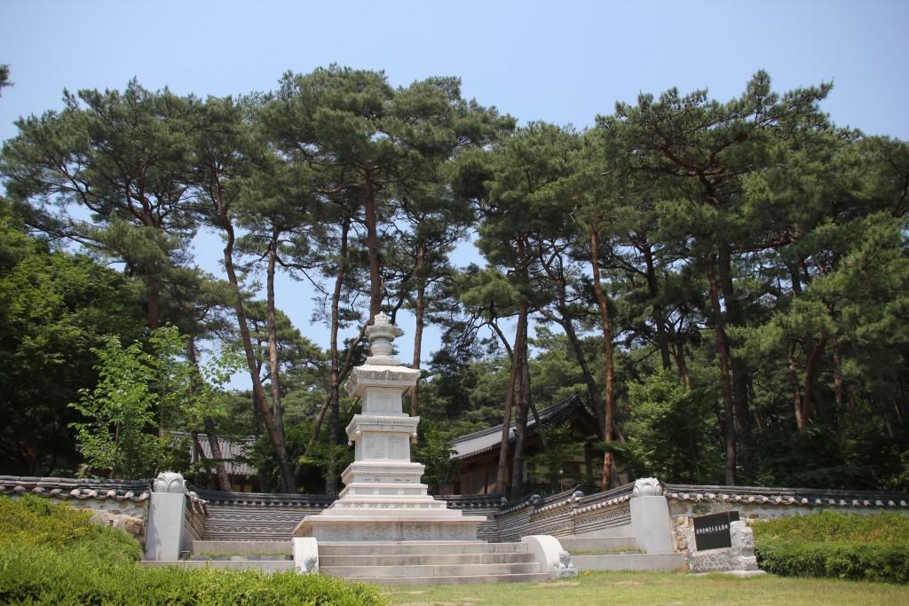 소나무와 석탑