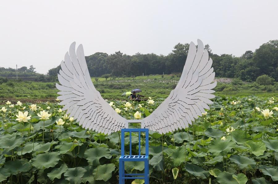 연꽃단지의 포토존 (벤치 뒤에 날개가 달린 모습)