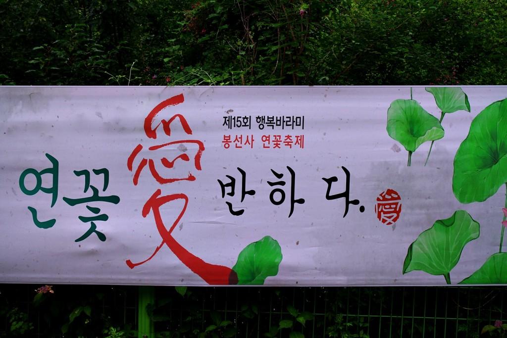 경기도포천여행흥룡사 (4)