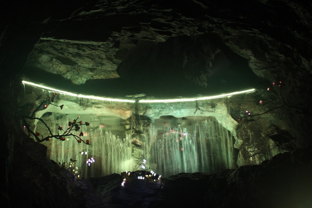 광면동굴,업사이클링,광명시장,곤드레 292