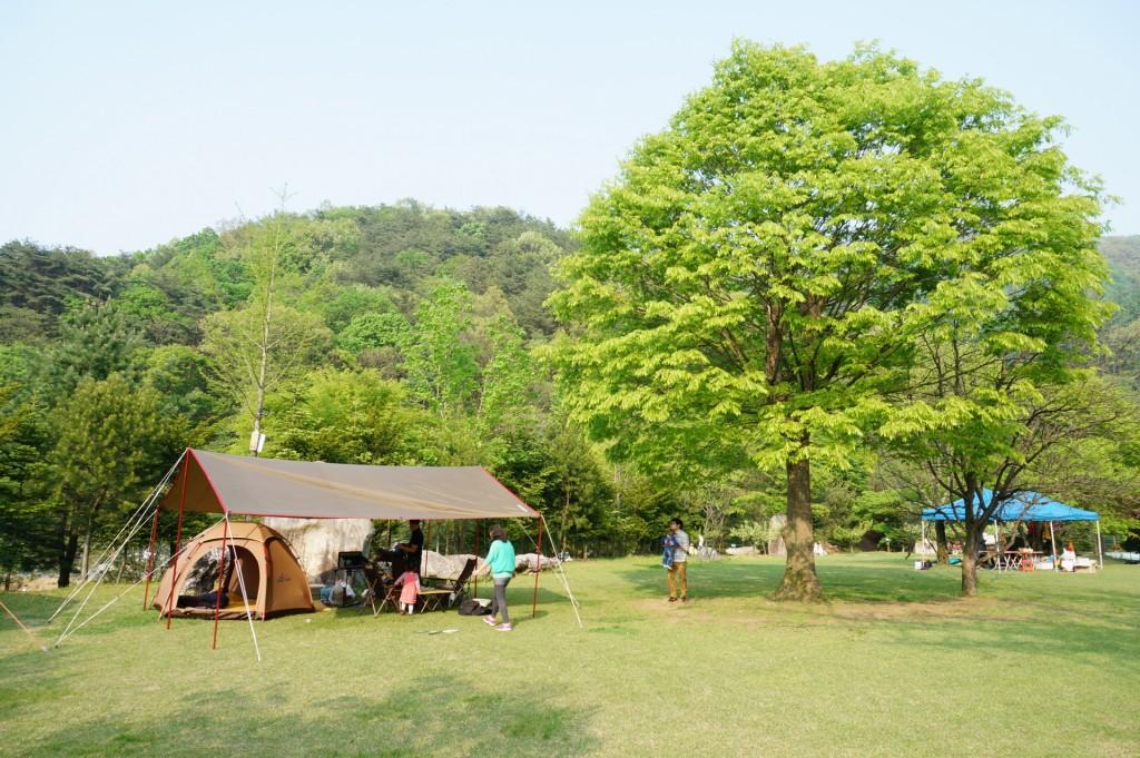 금광관광농원 캠핑장1