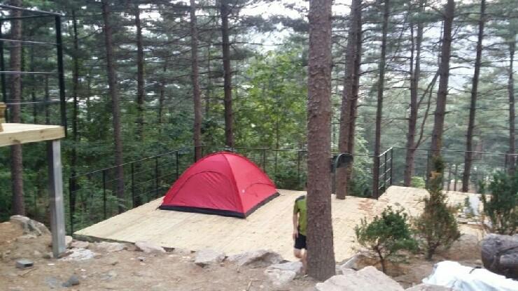 나무새 캠핑장