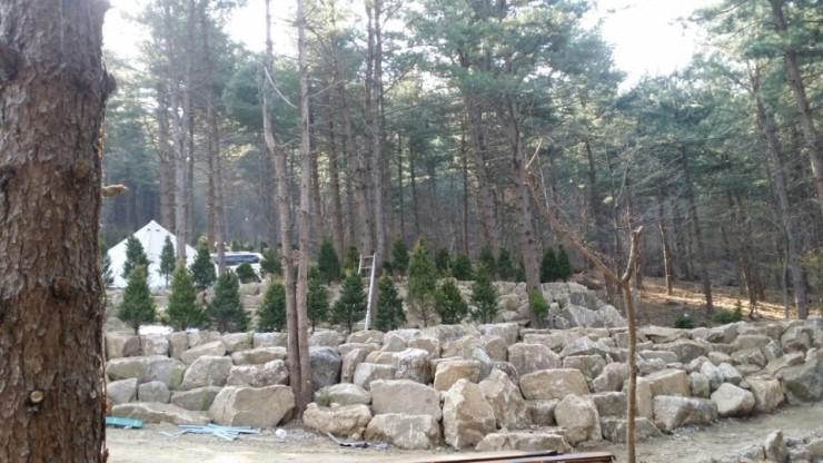 나무새 캠핑장2