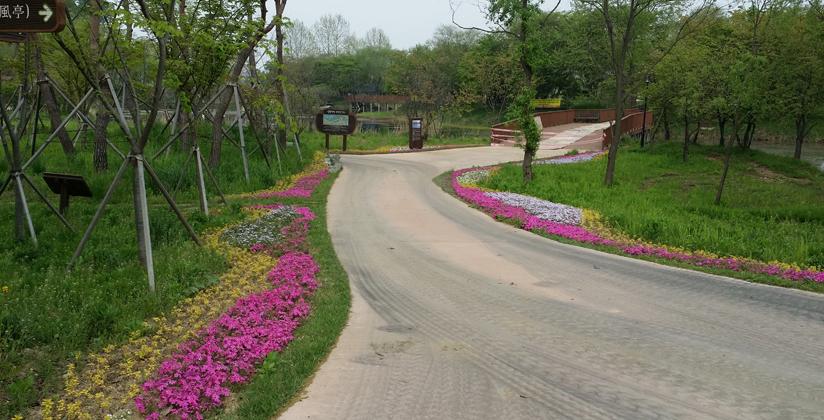 소풍정원 캠핑장2
