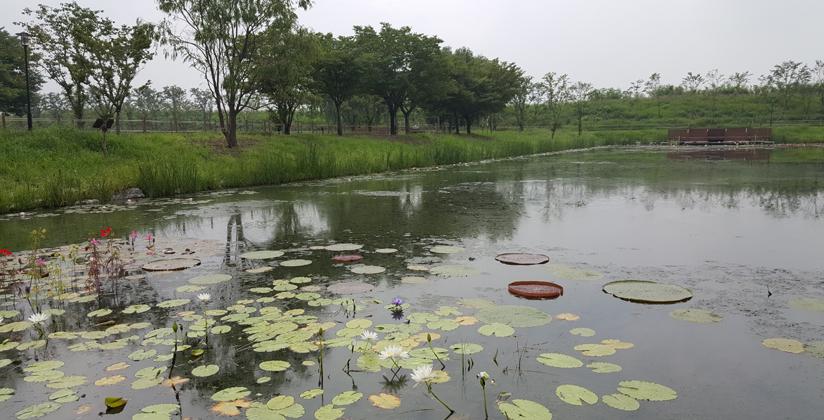 소풍정원 캠핑장