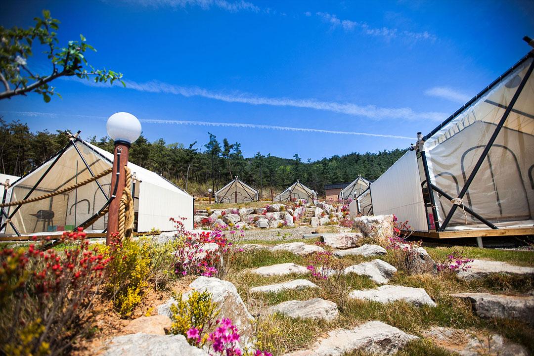 씨엘관광농원 캠핑장