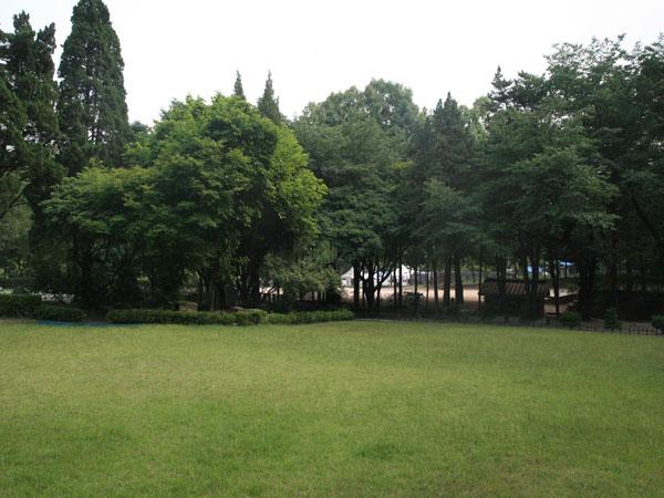 서울YMCA 다락원 캠프장2