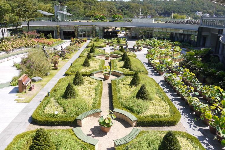신구대식물원 꽃무릇 축제 (2017.9.15~10.1) 한창 예뻐요