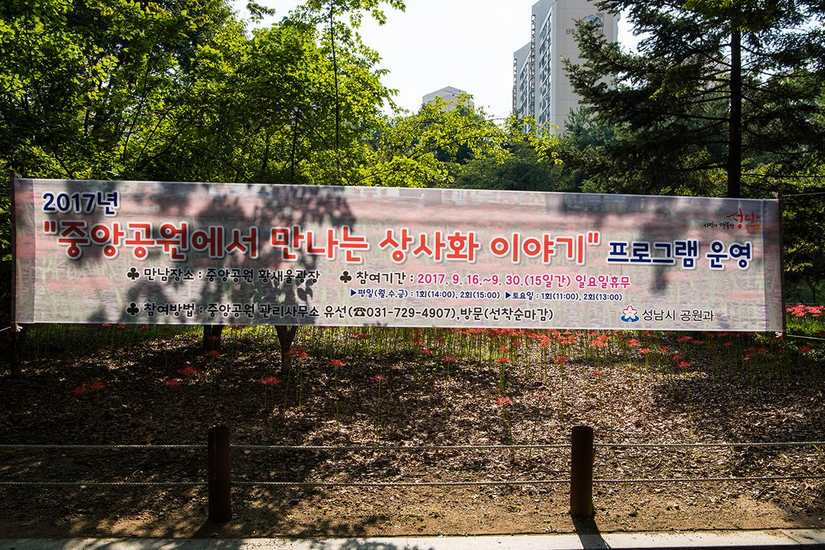 02 분당중앙공원