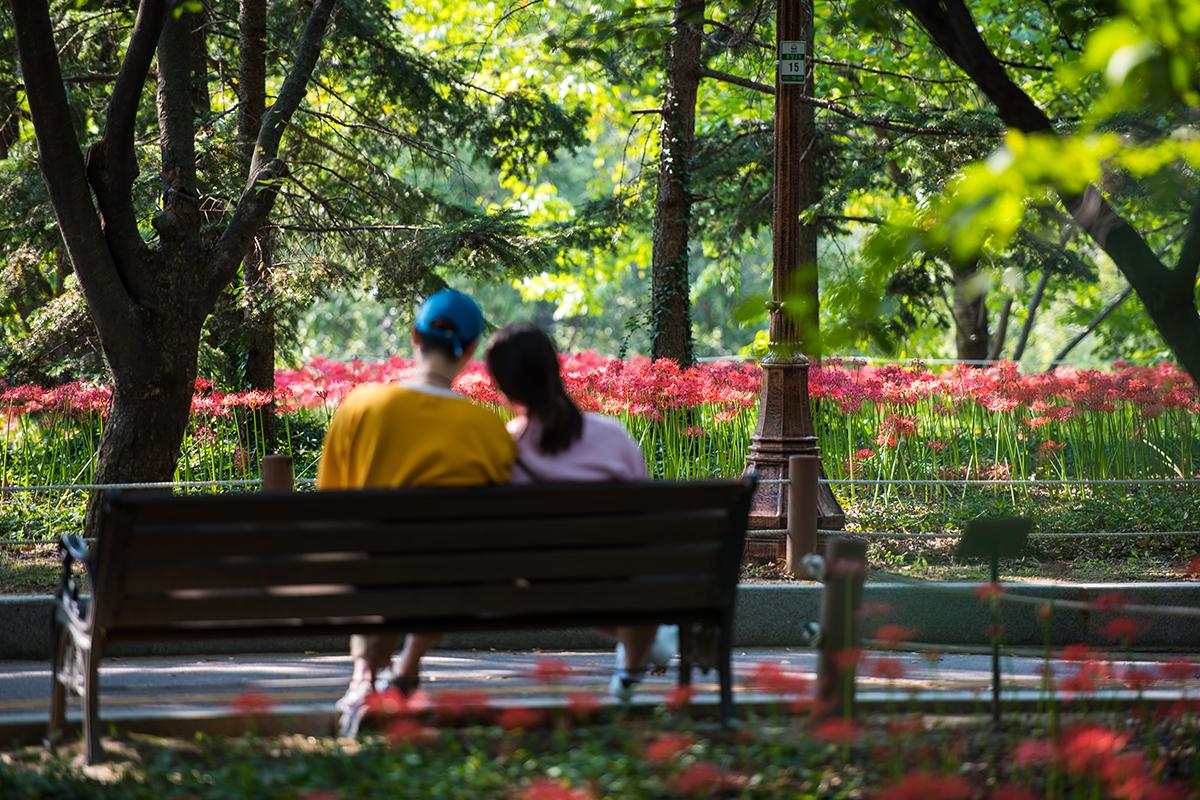 13 분당중앙공원