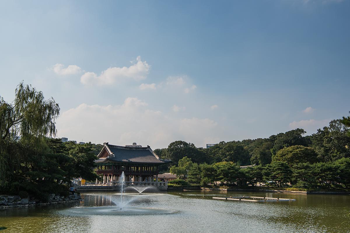 21 분당중앙공원