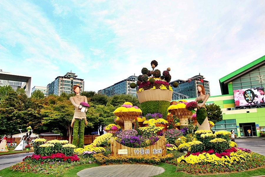 경기도 고양 가볼만한곳 가을꽃축제가 열린 일산호수공원