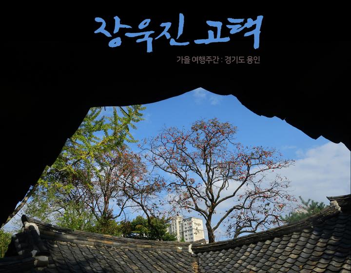 [가을여행주간] 마음속의 경기도 206. 용인 장욱진고택