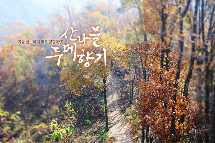 경기도 양평 추천여행 – 마음속의 경기도 214. 산나물 두메향기