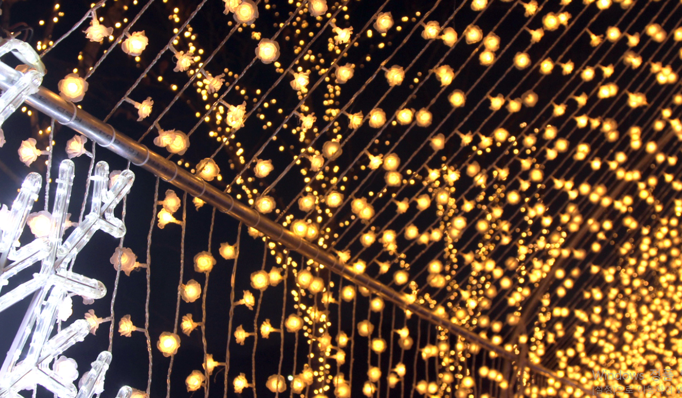 파주프로방스 별빛축제