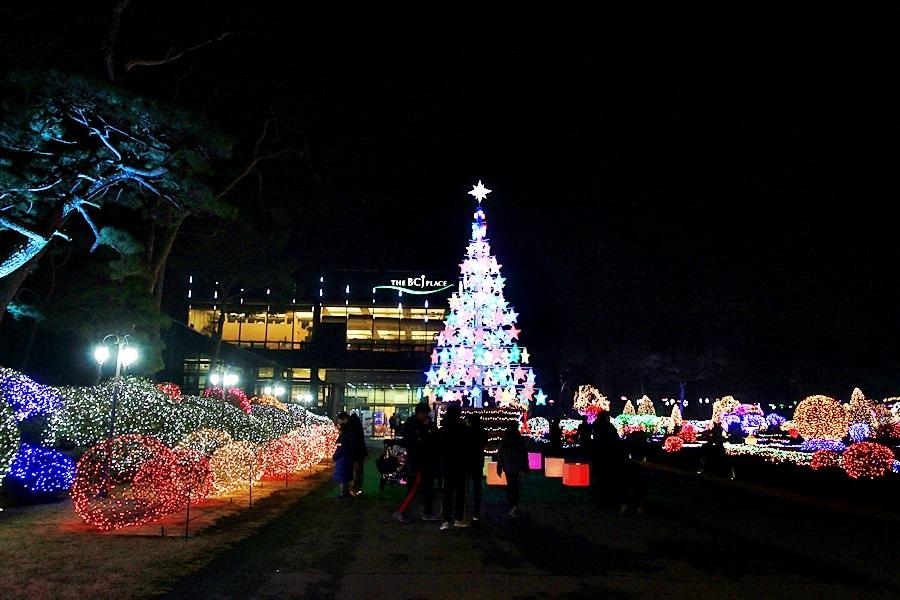 경기도 겨울여행 파주 벽초지수목원 빛축제