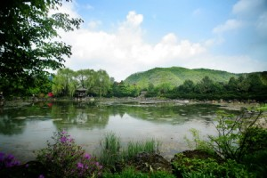 The Botanical Garden of BCJ Paju2