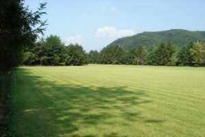 The Botanical Garden of BCJ Paju3