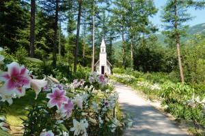 The Garden of Morning Calm4