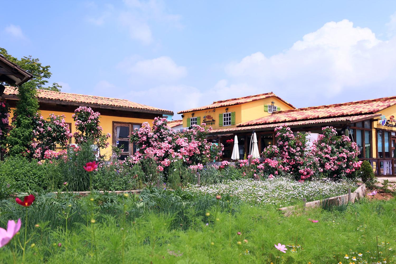 Provence Village2