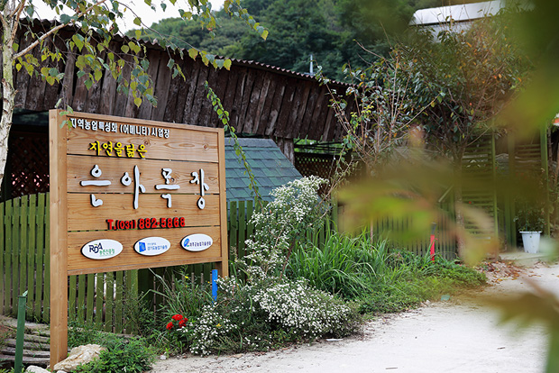 Euna Farm for Fun Family Travel1