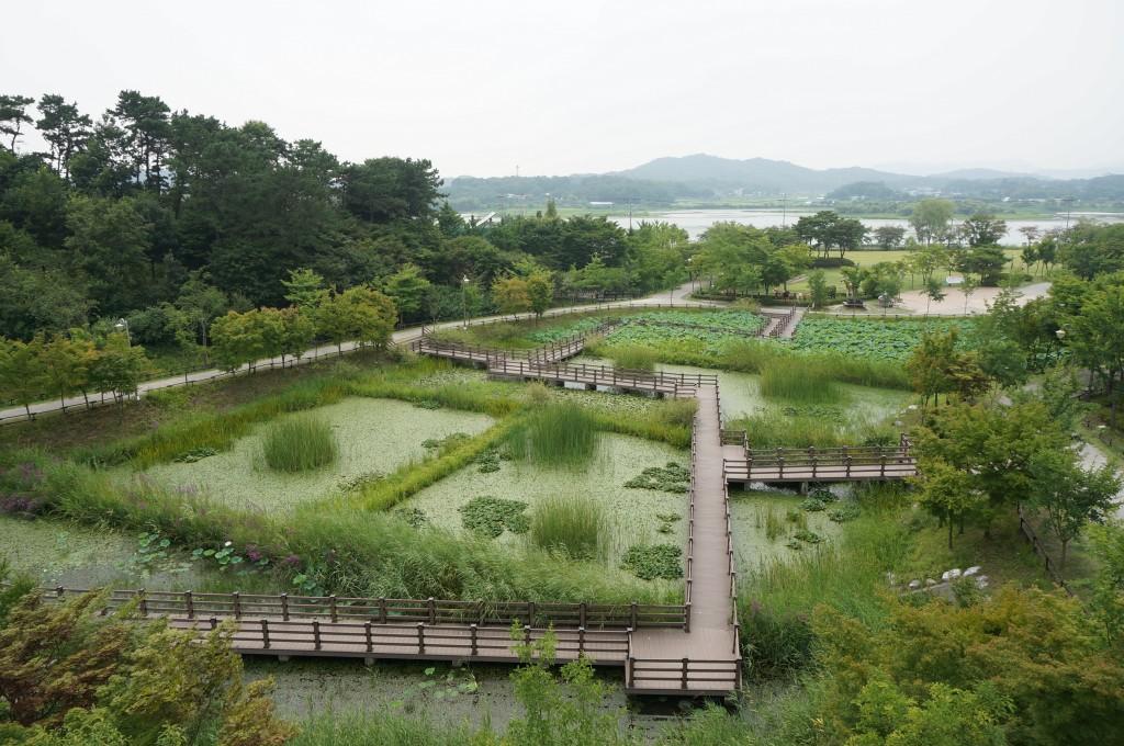 Uiwangsi Natural Park1