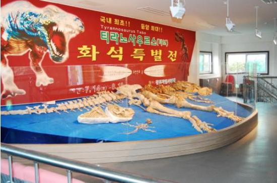 Changjo Natural History Museum