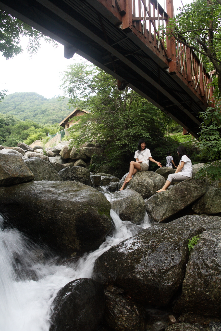 Chungnyeongsan Natural Recreation Forest2