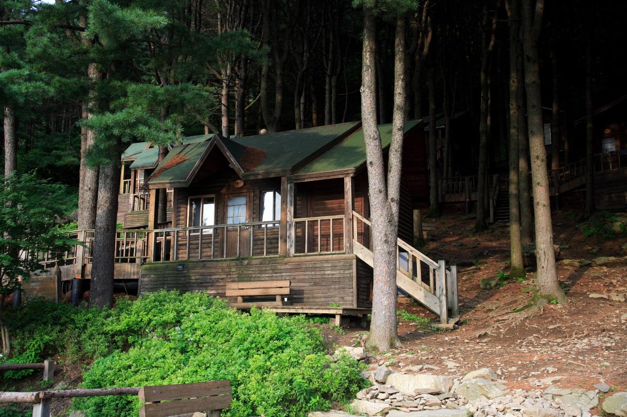 Chungnyeongsan Natural Recreation Forest3