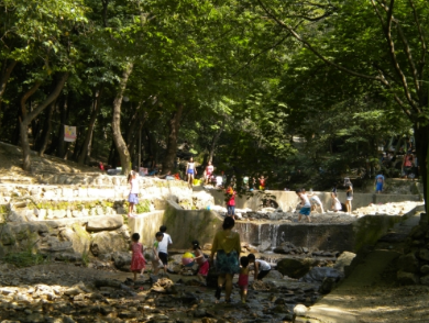 Seoul Grand Park's Campsite