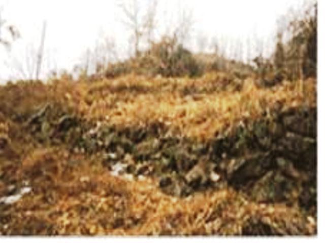 Gomorisanseong Fortress