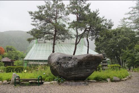 Yumyeongsan Botanical Garden