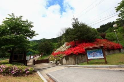 Myeongjisan County Park1
