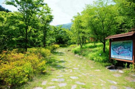 Myeongjisan County Park2