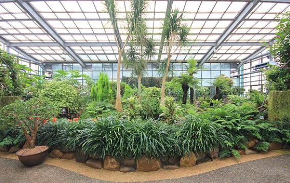 Natural Theme Botanical Garden2