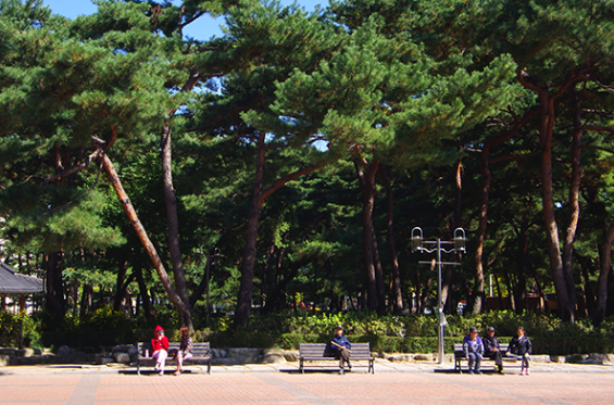 Solbat Park2