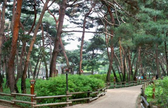 Solbat Park3