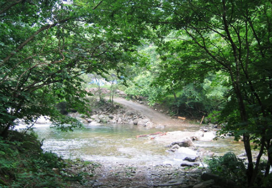 Yongchu Natural Recreation Forest